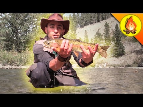 Catching Trout...THE HARD WAY!