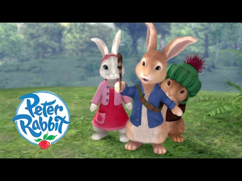 Peter Rabbit - Tail for a Feather   Cartoons for Kids