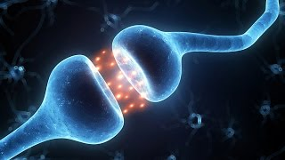 Взаимосвязь свойств двух частиц во Времени (Квантовая запутанность)