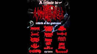 DECAYING FLESH - The Ravenous Dead (A Tribute to VOMITORY)
