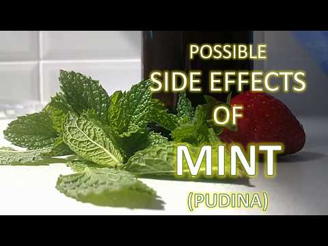 Possible side effects of MINT Leaves
