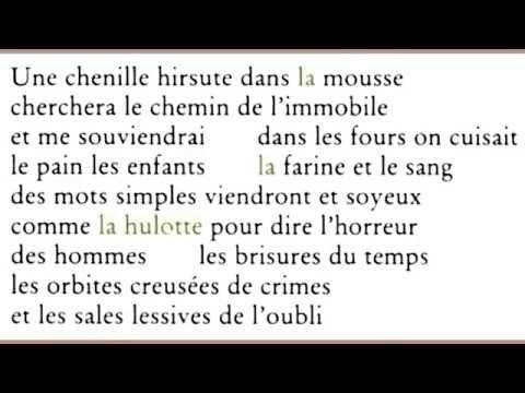 Une chenille hirsute dans la mousse..., Jacques Brault
