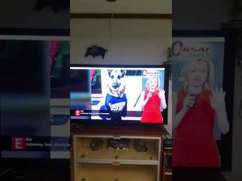 Our Spurs cheerleader Ziva making the San Antonio news!