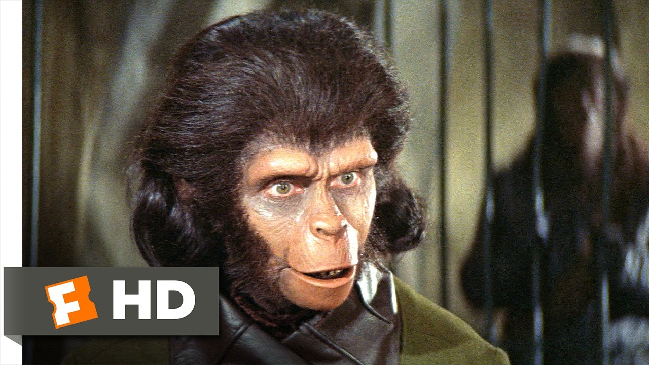 Planet Of The Apes 2 5 Movie Clip Human See Human Do 1968 Hd Youtube