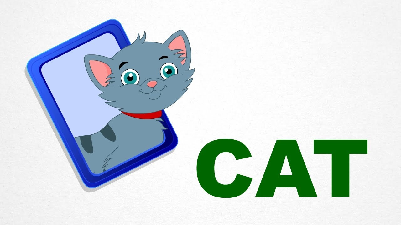 Learning Words Like Cat