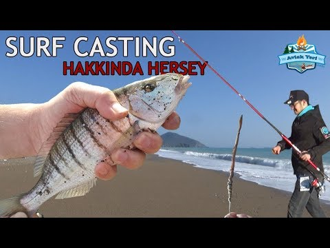 Kıyıdan Surf Casting ile Nasıl Balık Yakalanır? Mırmır Bastı.