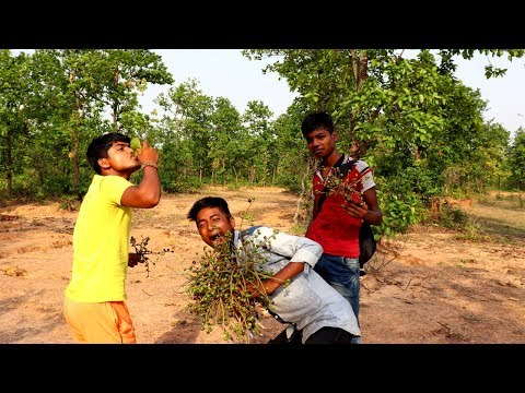 Piyal Fal Makha by village boys | Unknown Wild Food Collect and Recipes | Village Food Recipes