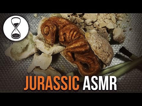 JURASSIC ASMR – Whispered Scientist Role Play – EXCAVATION TINGLES!