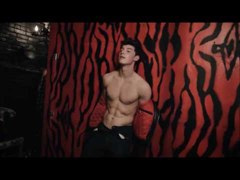 Shawn Mendes - Lego House