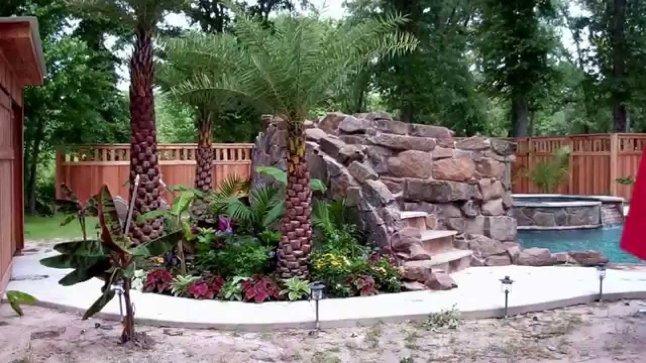 pool landscaping houston palm trees
