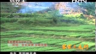 华人世界 《华人世界》 20130821 客家足迹行(103) 槟城:客家深情 豆蔻浓香