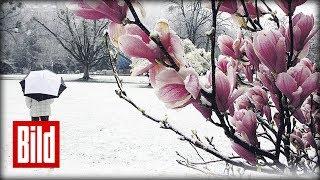 Wetter - Polarluft und Schneefall am Wochenende / Winter kommt