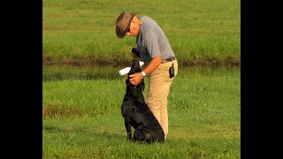How to use a pond correctly with Bill Hillmann Part 1