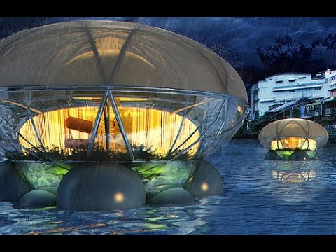 Floating Jellyfish Lodges Can Purify Water And Grow Food