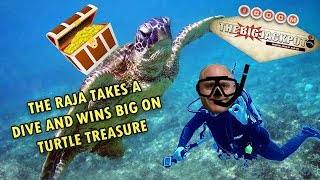 🐢 The Raja Takes a Dive & Wins BIG on Turtle Treasure 🎰