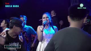 Download Lagu Terbaru Dian Anic  2019 - DISAWANI - Desi Paraswati - NAELA NADA Live Getrakmoyan Mp3