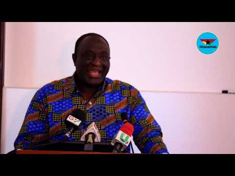 Emulate Ghana's 'transformative program' for industrial growth – Trade Minister to African gov'ts