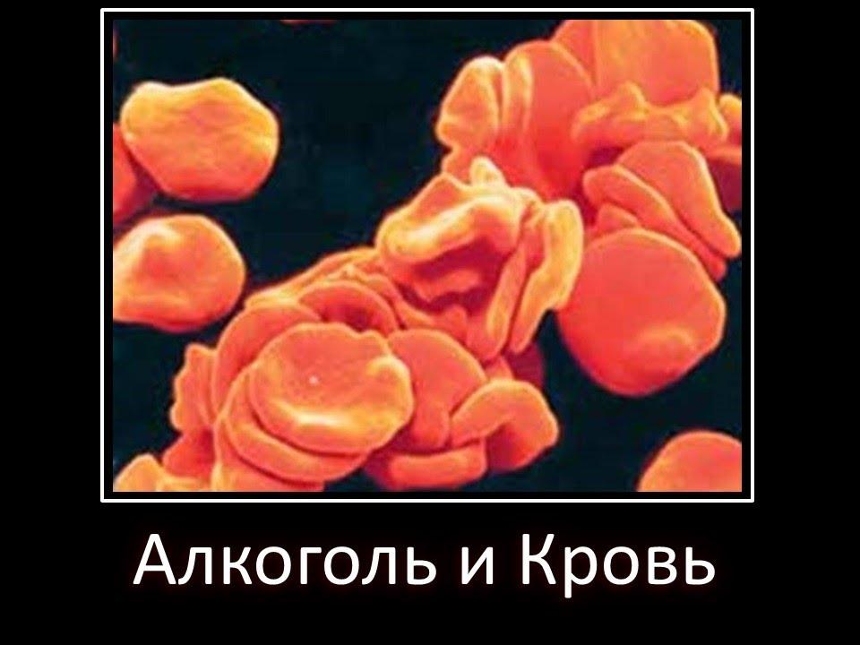 как аллергия влияет на анализ крови