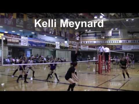 XLR8 Volleyball