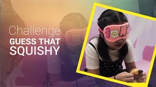 Guess that squishy challenge