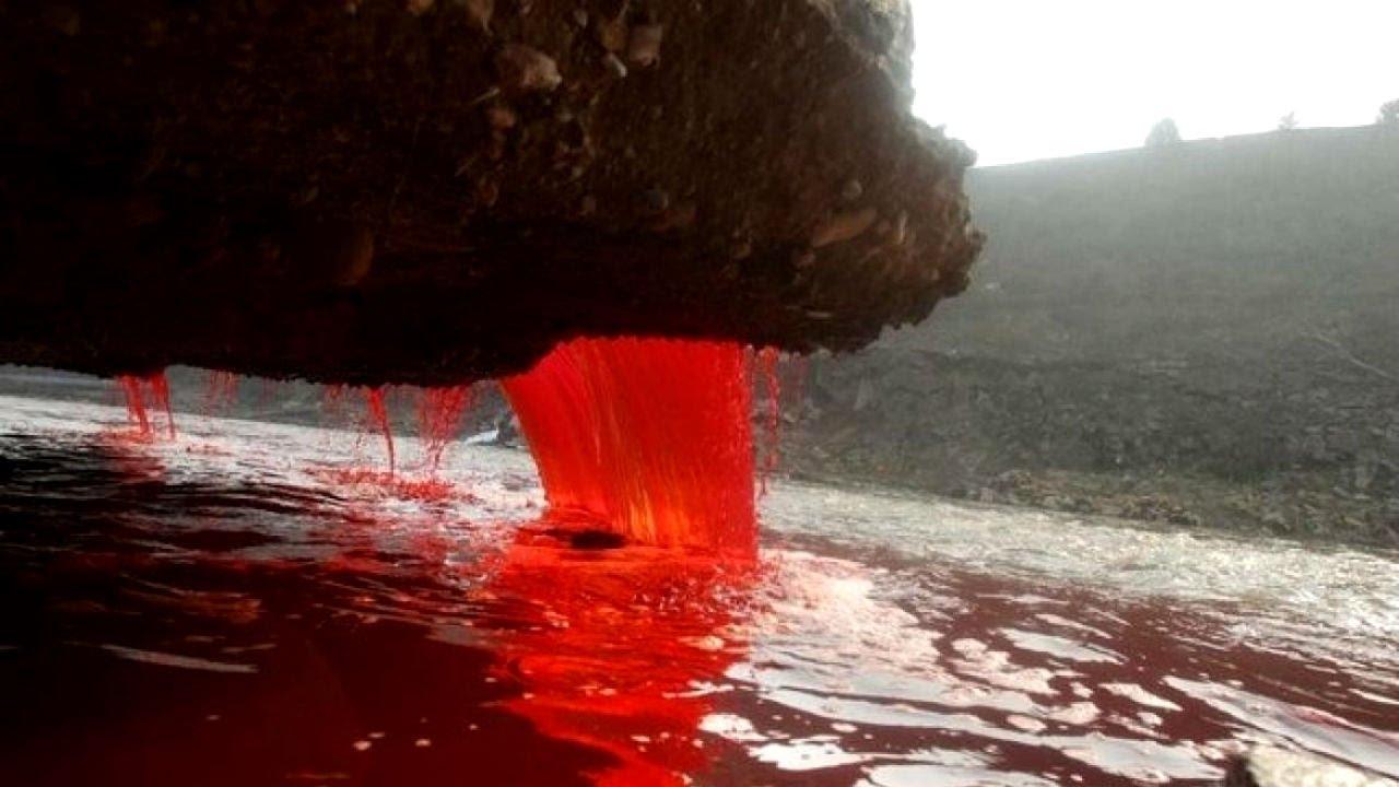 Image result for blood falls antarctica