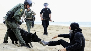 Police Sick K-9 on Antifa