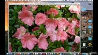 10 Cropping tool Photoshop Tutorial