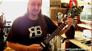 Michael Schenker - Into the arena - cover by Raimund Burke