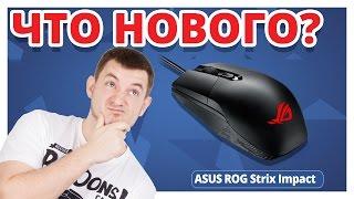 Обзор Игровой Мыши ASUS ROG Strix Impact!