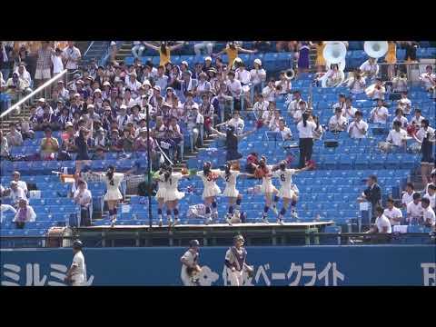 明治大学チアリーダー 優勝を後押しするパフォーマンス(東京6大学野球)
