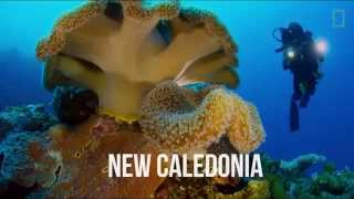 Pristine Seas: Journey to the Ocean