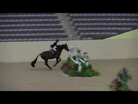 Video of COLETRANE SOUL ridden by CLAIRE STOCKARD from ShowNet!