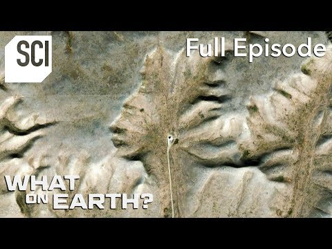 A Mysterious Face in the Canadian Badlands | What On Earth? (Full Episode)