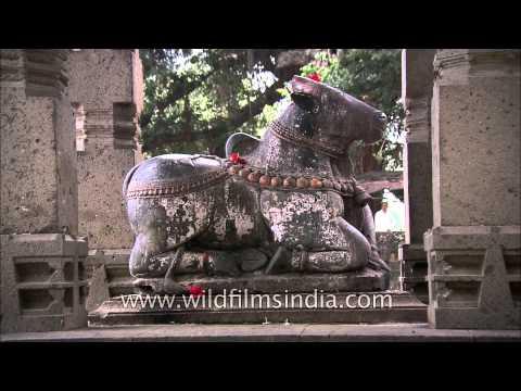 Statue of Nandi at Kashi Vishwesgwar Mandir