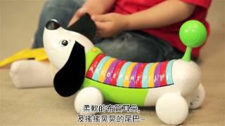 LeapFrog跳跳蛙 彩虹字母小狗