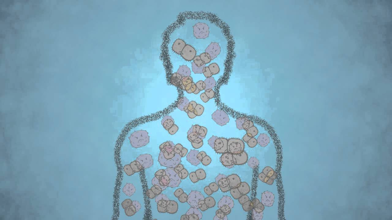 Antigen vs Antibody – What Are the Differences? | Technology