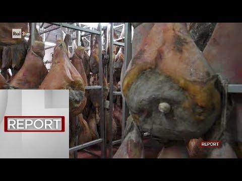 La porcata - Report 20/05/2019