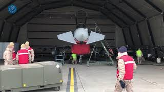 Detachment 'Paznic': Eurofighter specialists