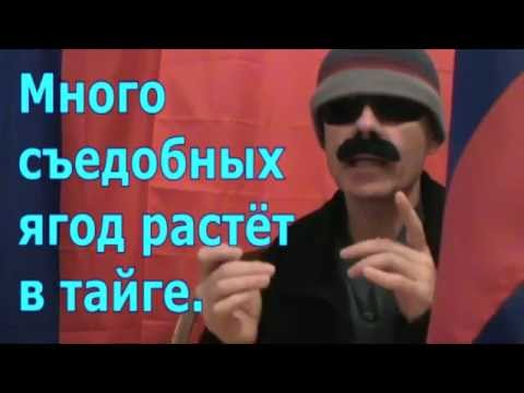 Russian Geography Lesson 08 - тайга