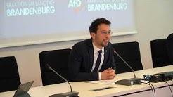 Dennis Hohloch (AfD): Sondersitzung: Vorgehen der Präsidentin ist durchschaubare Hinhaltetaktik