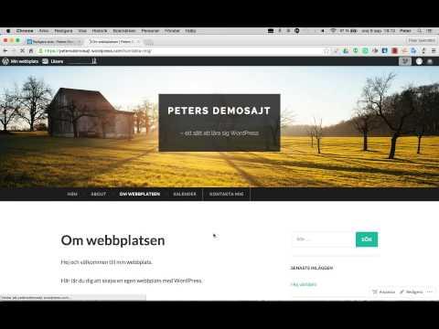 STEG 3: Så skapar du sidor och menyer i WordPress
