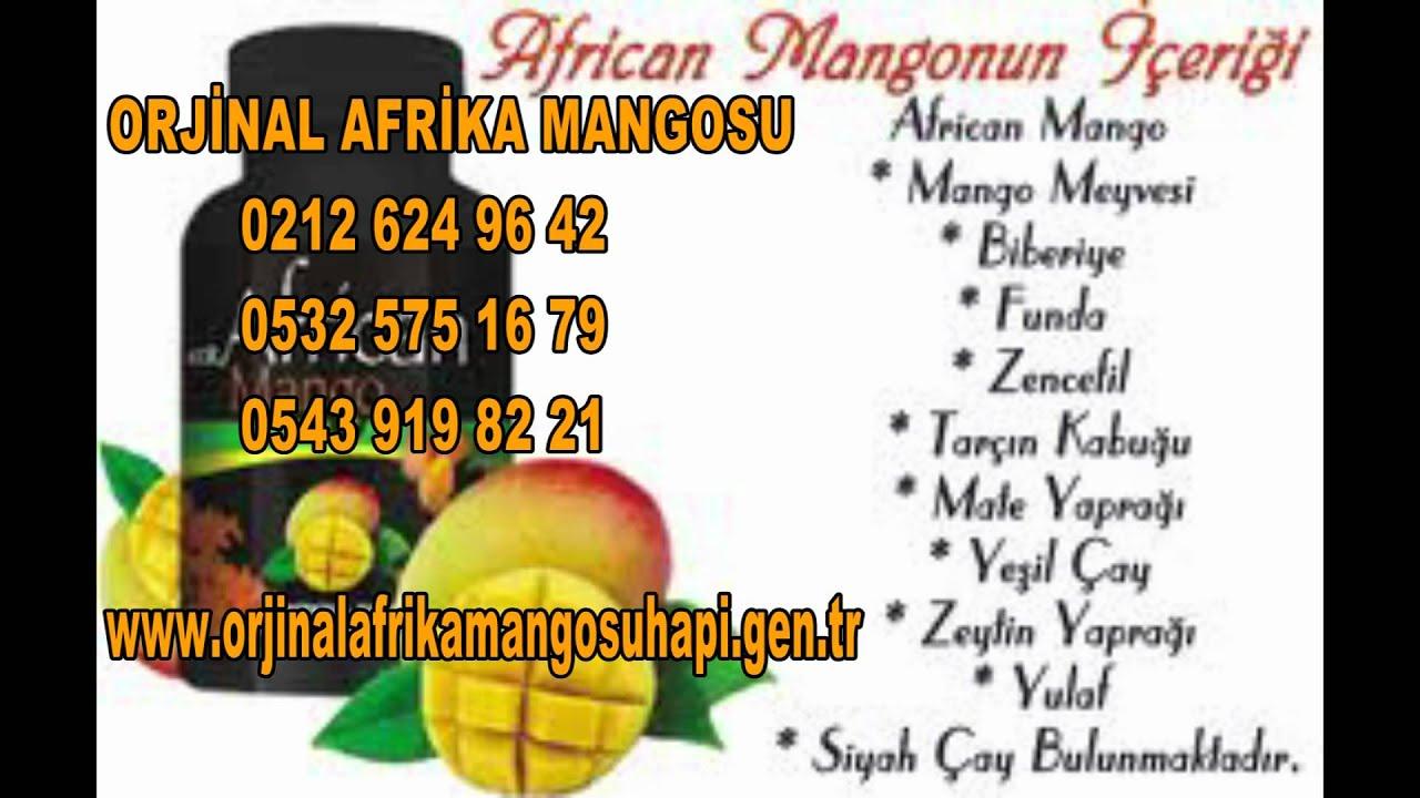 Afrika mango zayıflama