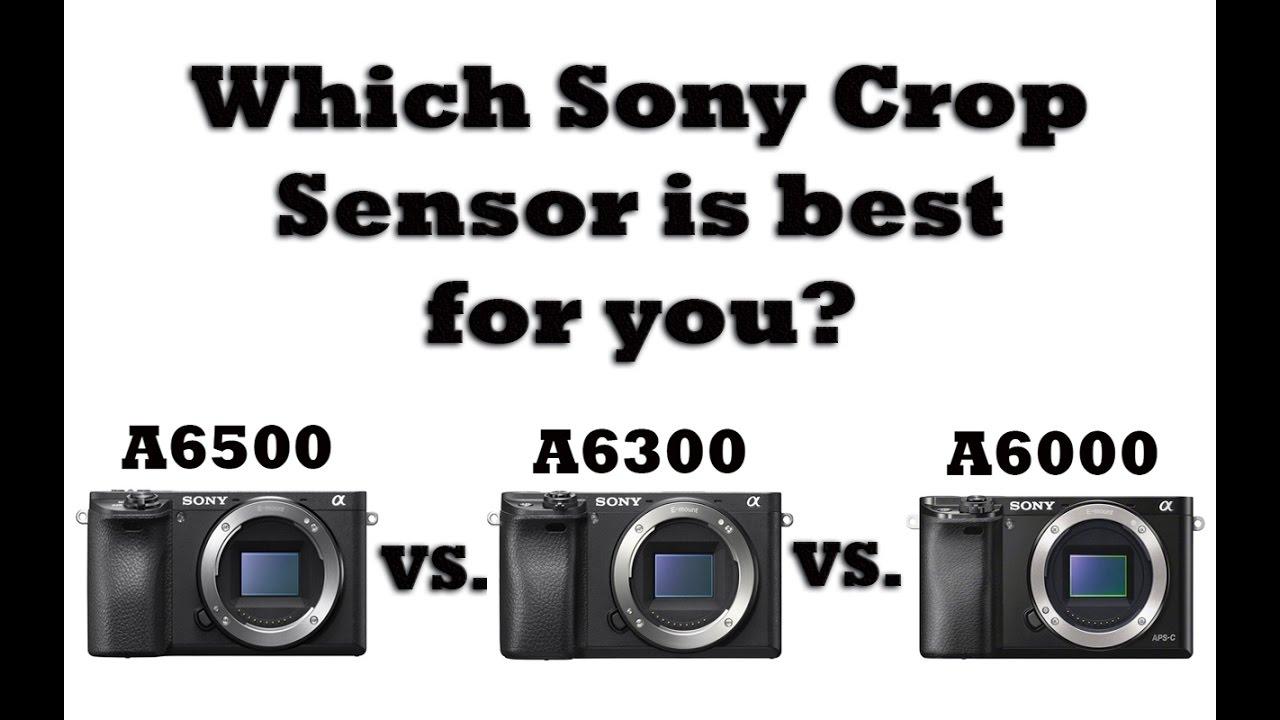 Sony A6500 vs. A6300 vs. A6000- Which Sony Crop Sensor Body is BEST ...