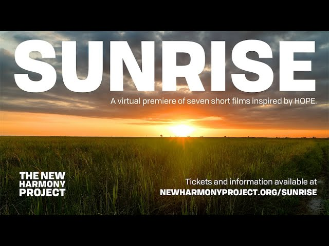 Sunrise: A virtual premiere of seven short films inspired by HOPE