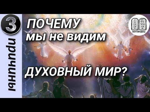 Почему мы не видим духовный мир? 3 примера.Максим Каскун