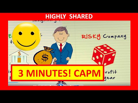 3 Minutes! CAPM Finance and the Capital Asset Pricing Model Explained (Quick Overview)