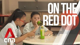 CNA | On The Red Dot | S7 E11: Growing up in a super-sized family
