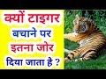 Why do we need to save tigers ? | conservation of tigers | project tiger | In Hindi |