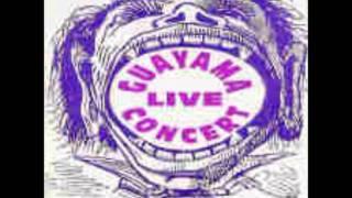 Escuadron Latino-Guayama Live