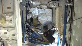 Weightlifting on the International Space Station With Astronaut Doug Wheelock